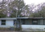 Foreclosed Home in Saint Augustine 32092 8113 COLEE COVE RD - Property ID: 3013283