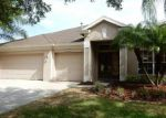 Foreclosed Home in Tampa 33647 9455 HUNTERS POND DR - Property ID: 3282661