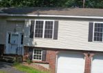 Foreclosed Home in Milford 18337 129 BUTTERNUT RD - Property ID: 3317276