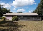 Foreclosed Home in Gibsonton 33534 10808 MONICA DR - Property ID: 3360309