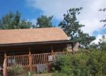 Foreclosed Home in Sevierville 37876 2160 HUMMINGBIRD HILL WAY - Property ID: 3389955