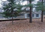 Foreclosed Home in Au Gres 48703 5361 E 11TH ST - Property ID: 3512581