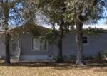 Foreclosed Home in Mulberry 33860 2415 RIVERWOOD DR - Property ID: 3589600