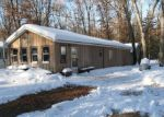 Foreclosed Home in Baldwin 49304 8309 S PINGREE AVE - Property ID: 3593188