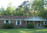 Foreclosed Home in Axis 36505 535 RICHIE ST - Property ID: 3664216