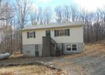 Foreclosed Home in Bushkill 18324 1204 BEAR DR - Property ID: 3666914