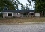 Foreclosed Home in Pensacola 32526 7731 BRANDYWOOD DR - Property ID: 3784229