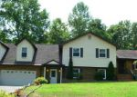 4411 ANGELICA DR