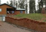 568 ALPINE FOREST DR