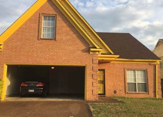 7805 WOLF HOLLOW DR