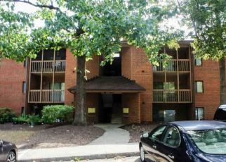 TURTLE CREEK RD APT 3
