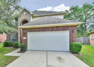 25634 SADDLEBROOK VILLAGE DR
