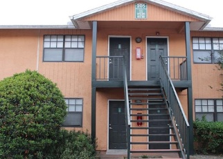 POINSETTIA PINE CT APT 101