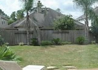 17707 FOREST HAVEN TRL